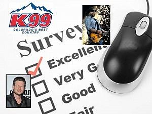 K99 Song Survey