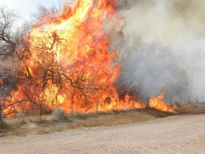 Fire near Cobb Lake State Wildlife Area