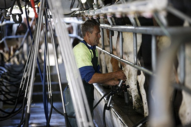 Fonterra Co-operative Hold Annual General Meeting