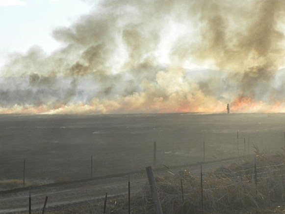 Buss Grove Fire Larimer County
