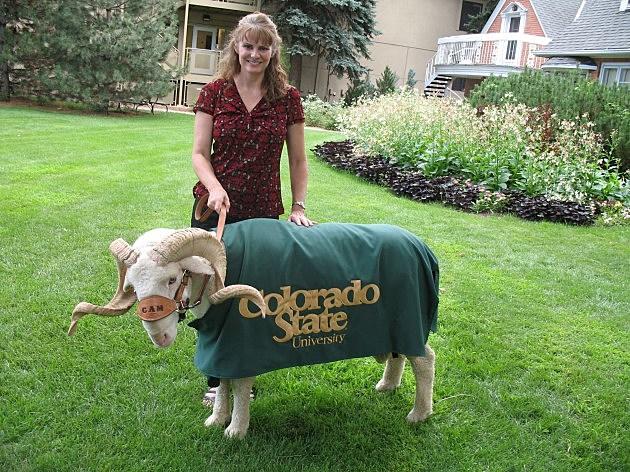 Jenny Harding with CSU Mascot Cam the Ram