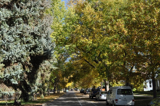 Mountain Avenue in Fort Collins