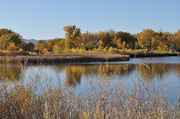 Riverbend Ponds, Fort Collins