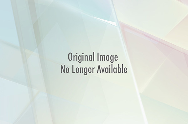 Pug Dress Pugs Dressed as Movie