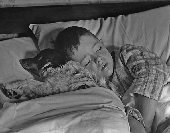 Sleeping With The Dog