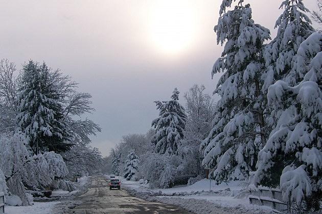 Fort Collins Snowstorm