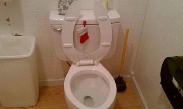 chirstmas toilet