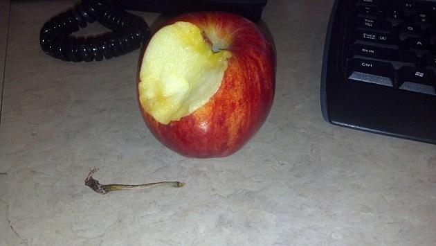 The Apple Stem Twirl