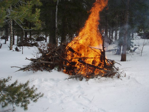 Burning Slash Piles