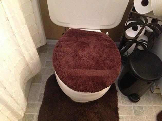 toilet toupee