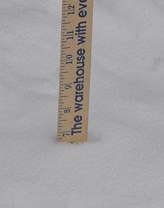 We got just about 7 inches at our house