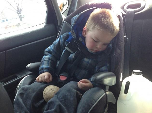 zander sleeping with rock