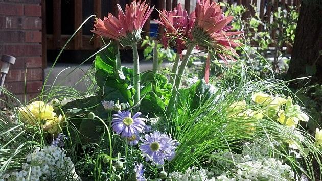Annual Flower Pot 2013 1