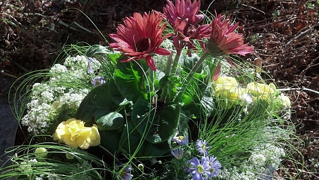 Annual Flower Pot 2013 2