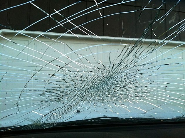 Windshield after being hit by owl