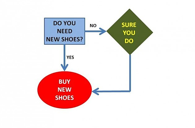Should I Buy Shoes Flowchart