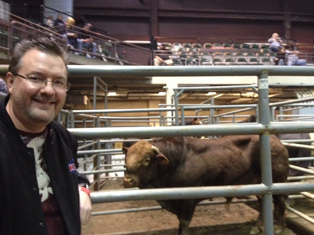 Todd Harding with Bull at New Year's Eve Extreme Rodeo Challenge