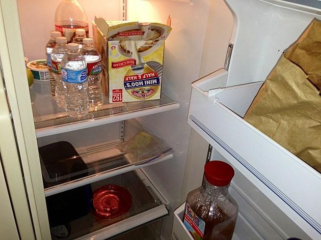 fridge stuff