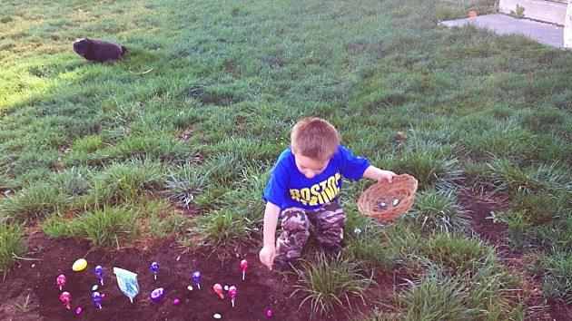 zander in candy garden