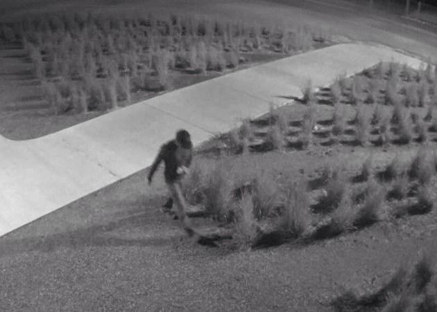 Mead High School Vandalism Suspect