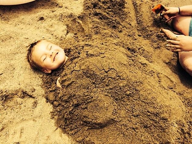 zander in sand