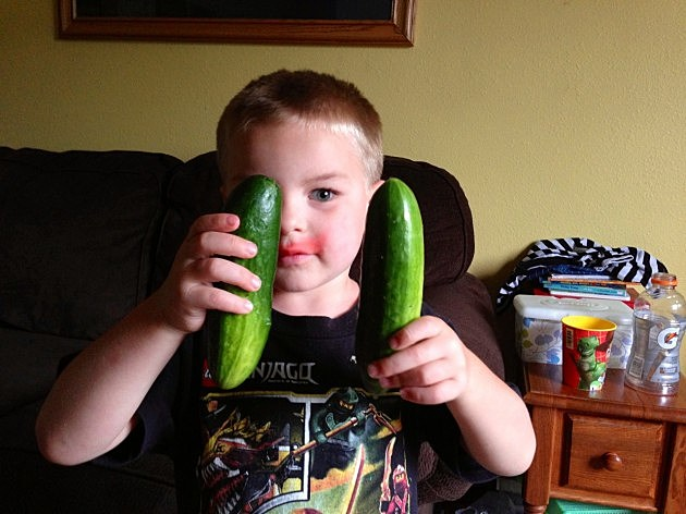 Zander and his cucumbers