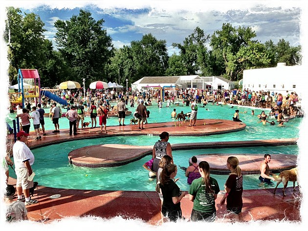 10th Annual Pooch Plunge