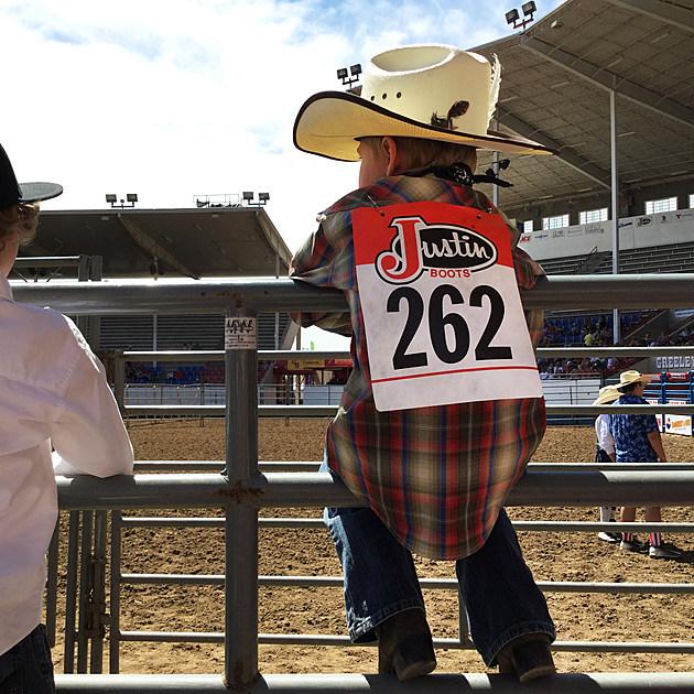 Greeley Stampede Kids Rodeo
