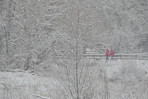 Fort Collins Snowstorm December 2015