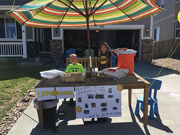 Jackson and Maisie's Lemonade Stand